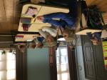 2018.10.08 lapsevanem koolis_4. klass (3).JPG -