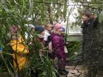 Botaanikaaed (3).JPG -