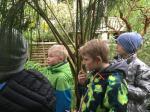 Botaanikaaed (5).JPG -